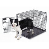 petmate 18w x 21h x 24l black collapsible single lock animal training crate  01375 in Fort Carson, Colorado