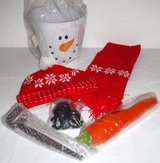 New! Build a Snowman Kit in Joliet, Illinois