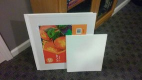 4 CANVAS BOARDS in Lockport, Illinois