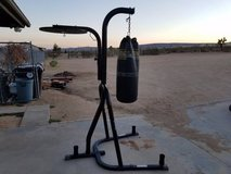 EVERLAST Dual-Station Heavy Bag and Speed Bag Stand in 29 Palms, California