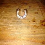 horseshoe ring in Vista, California