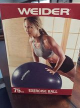 Weider Exercise and Stability Ball in Wheaton, Illinois