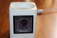 10 year anniversary Thank You Scentsy in Kingwood, Texas