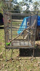 Large Bird Cage in Cleveland, Texas