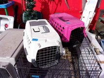 Small Dog Carrier in Fort Riley, Kansas
