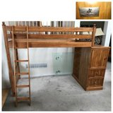 Honey Twin Pine Loft Bed by American Signature in Joliet, Illinois