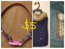 Doggie sweater and collar in Sugar Land, Texas