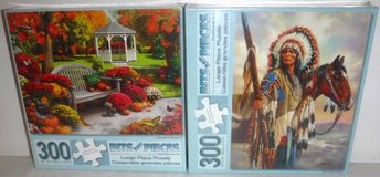 New! Set of 2 Bits Pieces 300 Pc Puzzles ~Autumn Oasis & Indian Chief in Orland Park, Illinois