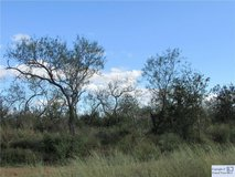 2.47 Acres! Bring your horses! in Rosenberg, Texas