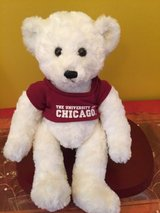 "university of chicago white teddy bear stuffed animal plush doll 13"" in Naperville, Illinois"