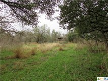 Let's Go Hunting! 38+ unrestricted acres! in Rosenberg, Texas