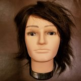 brand new. never cut. male mannequin head- alex. 100% human hair. in Glendale Heights, Illinois