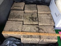 Paver Bricks Landscaping 8x8x5 Lip Edge Lot of 18 in Glendale Heights, Illinois