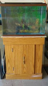 20 Gallon High Fish Tank & Stand & Accesories in Bolingbrook, Illinois