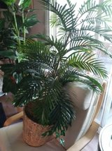 52 inch tall artificial plant  silk in Vacaville, California