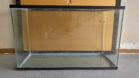 29 Gallon Fish/Reptile/Rodent Tank in Bolingbrook, Illinois