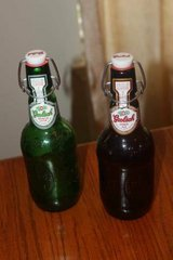 Two Grolsch Bottles with Labels in Spring, Texas