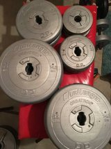 118 POUNDS / 53.8 KILOS of free weights in Sugar Grove, Illinois