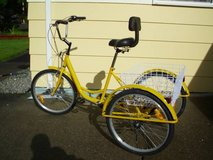 Trike, adult, yellow in Tacoma, Washington