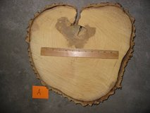 Ash wood slab slice LARGE 16-17 in rustic wedding cake centerpiece in Colorado Springs, Colorado