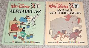 Vintage Lot of 2 1983 Walt Disney Fun To Learn Hard Cover Books Alphabet A-Z & Animals and Their... in Yorkville, Illinois