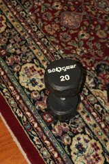 Two 20LB Dumbells in Spring, Texas