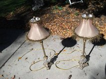set of lamps in Tinley Park, Illinois
