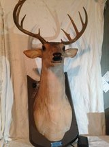 GEMMY Buck The singing deer in Dover, Tennessee