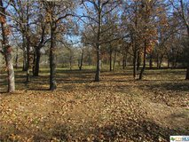 1.4 acres in Seguin! 3/1.5 singlewide! in Rosenberg, Texas