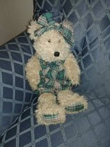 Boyd Bear with Plaid Outfit in Phoenix, Arizona