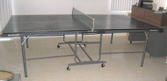 5' x 9' Ping Pong Table - Folds for Storage in Naperville, Illinois