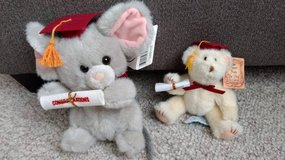 Graduation stuffed animals in Shorewood, Illinois