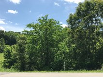 4.5 rolling acres. in Clarksville, Tennessee