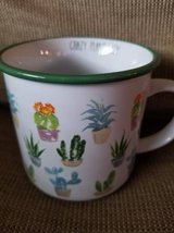 New succulent mug in Camp Pendleton, California