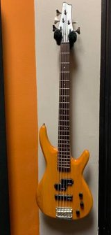 Alvarez 5 String Bass in Camp Pendleton, California