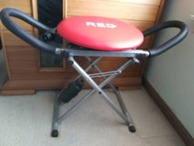 BEST OFFER SEATED FUN SWIVEL EXERCISE AB MACHINE FOLD UP in Naperville, Illinois