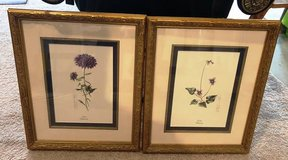 Artwork 14X17 2 Pieces w/ high end frame in Naperville, Illinois