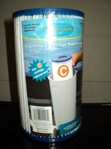 Sand N Sun Pool Filter Cartridge Replacement (T=43) in Fort Campbell, Kentucky
