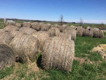 Got old hay? Not usable for animals? Yes, our farm will take it for mulch and bedding in Fort Lewis, Washington