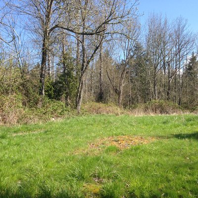 Build your Dream Home on this Gorgeous Lot! Wildai in REmilitary