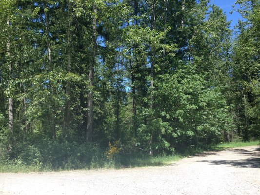Lovely Acreage on Dead End Road!  344th in REmilitary