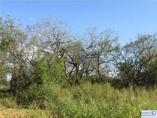 9.21 Acres in Seguin, Texas in REmilitary