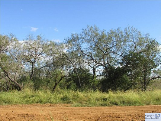 Land for Animals in Seguin Texas in REmilitary