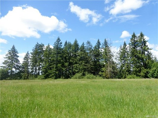 Peaceful 9+ Acres! Build Your Home! SR507* in REmilitary