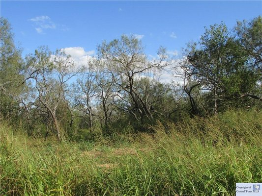 3.1 acres in Seguin, Texas! in REmilitary