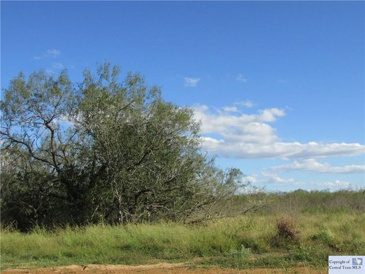 Less than an hour to San Antonio Airport2.2 Acres! in REmilitary