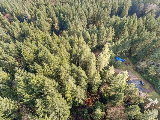 BUILDING PARCEL: 1.23-Acre Lot Near Gig Harbor WA in REmilitary