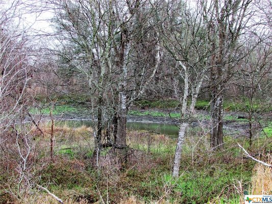 Let's Go Hunting! 38+ unrestricted acres! in REmilitary