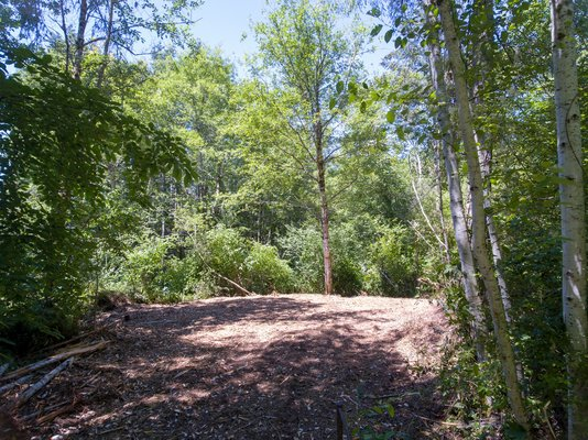 VIEW BUILDING LOT: 2.39-Acre Building Parcel in REmilitary