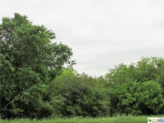 4.7 Unrestricted Acres in Gonzales County! in REmilitary